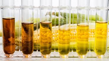 Анализ качества зерновых, масличных культур и растительного масла